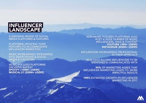 Influencer landscape